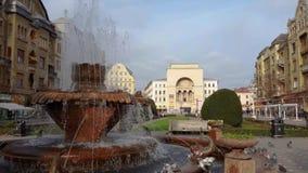 蒂米什瓦拉罗马尼亚有鱼喷泉和人民的皮亚塔Victoriei 股票视频