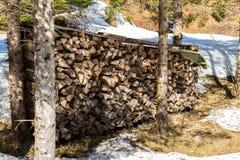 蒂罗尔州基希贝格,提洛尔/奥地利- 2019年3月24日:大堆火木头在森林和雪里 免版税图库摄影
