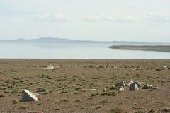 蒙古沙漠 图库摄影