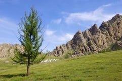 蒙古语热尔省 免版税图库摄影