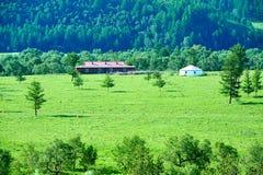 蒙古yurt和住宅 库存图片