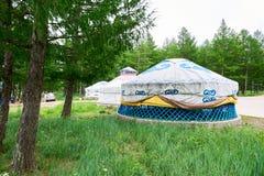 蒙古yurt在森林里 免版税图库摄影