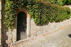 蒙塞利切,意大利- 2017年7月13日:绿色藤石篱芭和门 库存照片