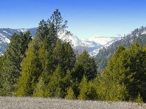 蒙大拿山在春天 库存图片
