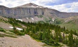 蒙大拿的原野 图库摄影