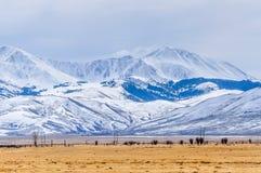 蒙大拿西部齿苋山冬天 库存图片