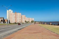 蒙得维的亚,乌拉圭- 2018年2月03日:沿Pocitos的大道 免版税库存图片