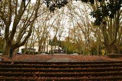 蒙得维的亚El普拉多喷泉,乌拉圭 库存图片