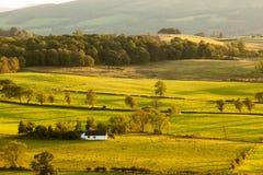 洛蒙德湖,苏格兰 免版税图库摄影