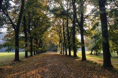 蒙扎意大利:秋天的公园 库存图片