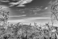 蒙泰圣萨维诺托斯卡纳意大利镇  免版税库存照片