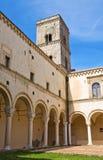 蒙泰斯卡廖索修道院。巴斯利卡塔。 库存图片