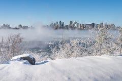 蒙特利尔地平线和圣劳伦斯河在冬天 免版税库存照片