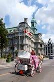 蒙特利尔市政厅,加拿大 免版税库存图片