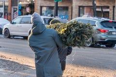 蒙特利尔,加拿大- 2017年12月16日:一个人运载一christm 库存图片