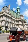 蒙特利尔市政厅 免版税图库摄影