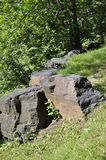 蒙特利尔, 6月27日:皇家山公园从蒙特利尔的魁北克省的 免版税库存照片