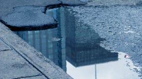 蒙特利尔水坑 库存照片