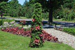 蒙特利尔botanial庭院 库存图片