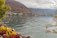 蒙特勒,瑞士- 2015年10月29日:蒙特勒和莱芒湖的堤防秋天视图  免版税库存照片