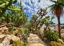 蒙特卡洛,摩纳哥- 2017年8月10日:仙人掌和多汁植物庭院的片段在摩纳哥 Jardin Exotique de摩纳哥 库存照片