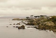 蒙特里加利福尼亚岩石海岸  免版税库存照片