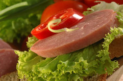 蒜味咸腊肠三明治 免版税库存图片