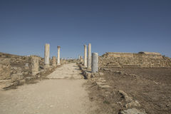 蒜味咸腊肠古老罗马站点在塞浦路斯 库存照片