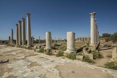 蒜味咸腊肠古老罗马站点在塞浦路斯 库存图片