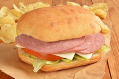蒜味咸腊肠和干酪三明治 免版税库存照片