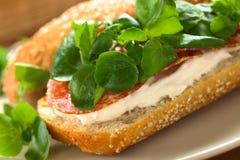 蒜味咸腊肠,乳脂干酪和水田芥三明治 免版税库存照片