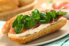 蒜味咸腊肠,乳脂干酪,水田芥三明治 免版税图库摄影
