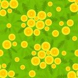 蒲公英模式无缝的黄色 免版税库存照片