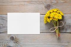 蒲公英花和空插件在桌上 库存图片
