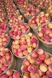 蒲式耳新鲜的桃子 免版税库存照片
