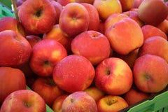 蒲式耳苹果 免版税图库摄影