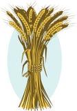 蒲式耳麦子 免版税库存图片