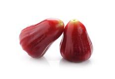 蒲桃或chomphu在白色背景 免版税库存图片