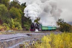 蒸在高架桥的火车在山 免版税图库摄影
