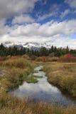 蒸汽和秋天颜色在盛大Tetons国家公园,怀俄明 免版税库存图片