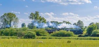 蒸汽火车在春天乡下 免版税库存照片