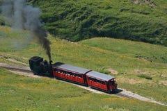 蒸汽火车/Brienzer Rothorn铁路(BRB) 免版税库存照片