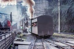 蒸汽狭窄测量仪火车 免版税库存图片