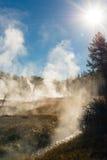 蒸汽的秋天 免版税库存图片