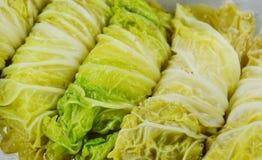 蒸的大白菜充塞了剁碎的猪肉和印地安蘑菇在罐 库存照片