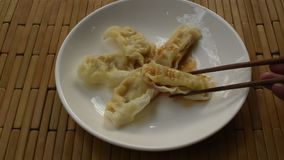 蒸的日本饺子或gyuza被充塞的剁碎的猪肉选矿酱油在板材和采摘由木筷子吃 股票视频