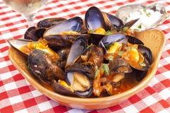 蒸的淡菜用marinara调味汁 免版税库存照片