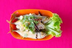 蒸的鲭鱼用调味汁 库存图片