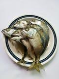 蒸的鲭鱼 免版税库存照片