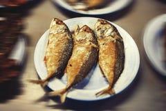 蒸的鲭鱼 免版税图库摄影